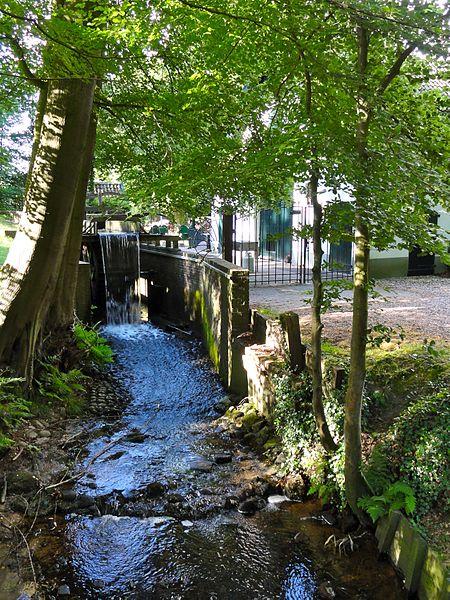 450px-Waterrad1_de_molen_Kasteel_Staverden